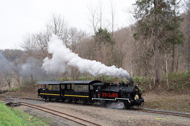190501 蒸機運転末端区間