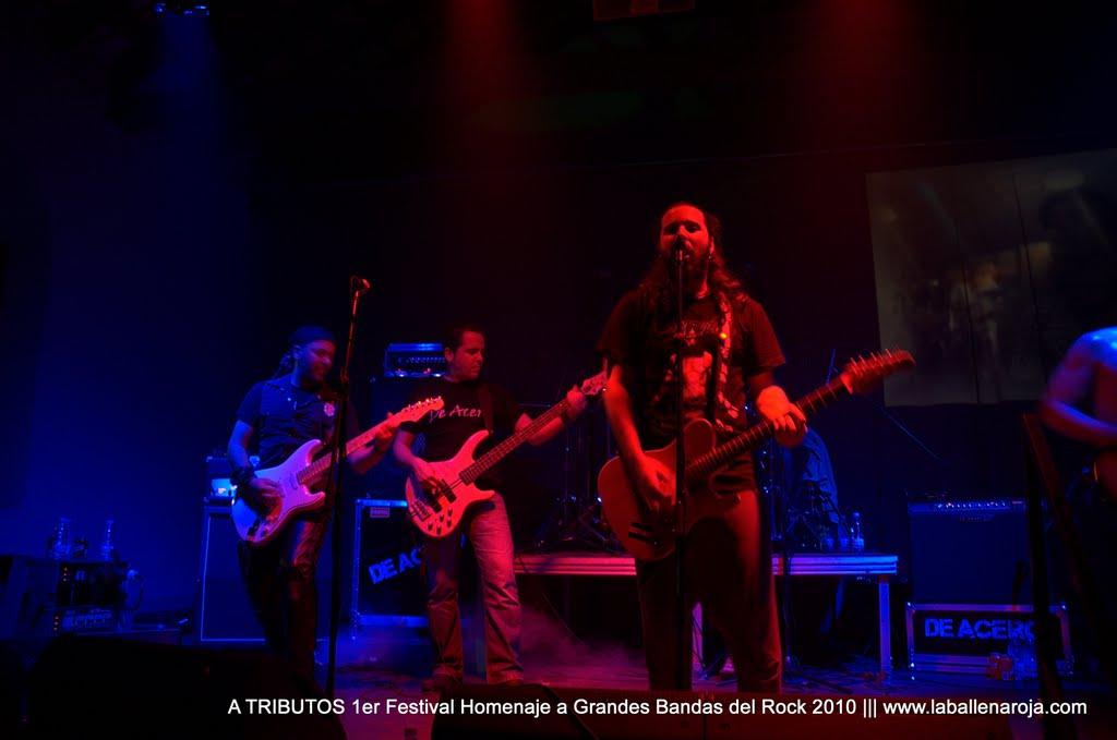 A TRIBUTOS 1er Festival Homenaje a Grandes Bandas del Rock 2010 - DSC_0136.jpg