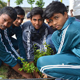 Gurukul Green Revolution (7).jpg