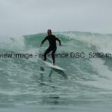 DSC_5202.thumb.jpg