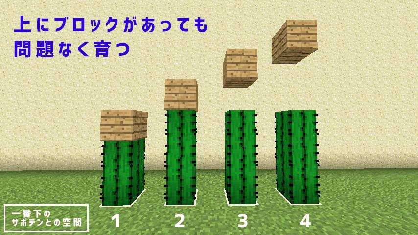 サボテン 栽培 マイクラ