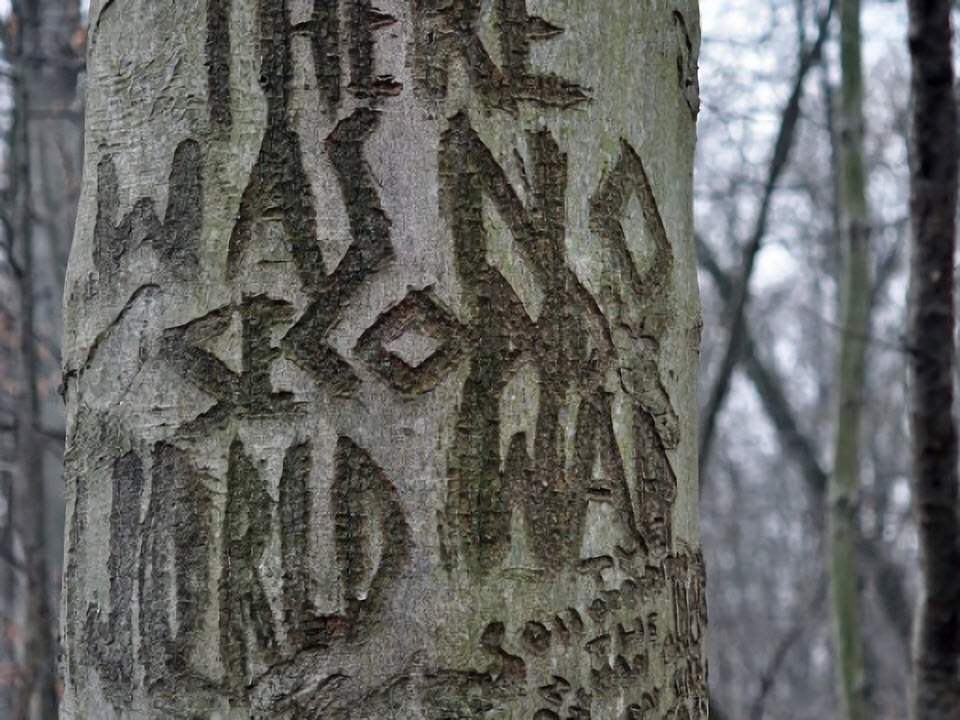 perryville-tree-engravings-4