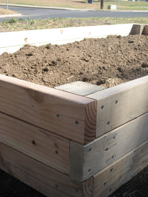 Raised bed handiwork.