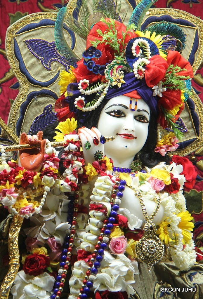 ISKCON Juhu Sringar Deity Darshan on 24th June 2016 (7)