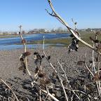 Река Усманка весенний паводок 014.jpg