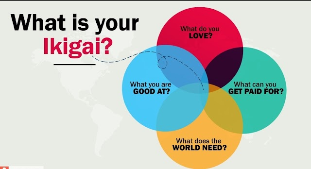 Ikigai: the almost perfect way to live life