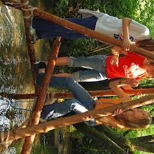 Vozlarija 890, Ilirska Bistrica 2007 - P0097274.JPG