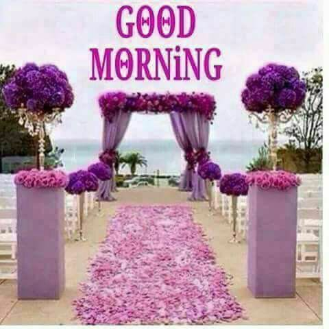 Collection Of Good Morning Wishes Images Miss You Love Pics