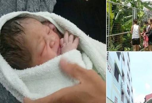 Bayi baru lahir dicampak dari tingkat lima sebuah apartmen