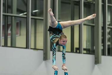 Han Balk Fantastic Gymnastics 2015-2712.jpg