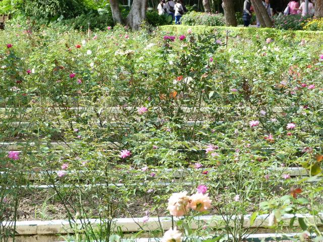 TAIWAN.TAIPEI, shilin une des villas de CKS dans un ancien parc botanique et autres vues - 1sichuan%2B007.JPG