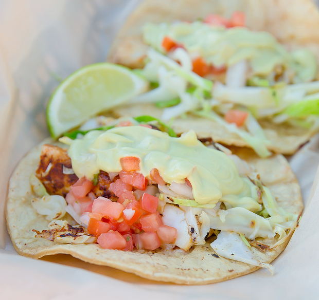 photo of fish tacos