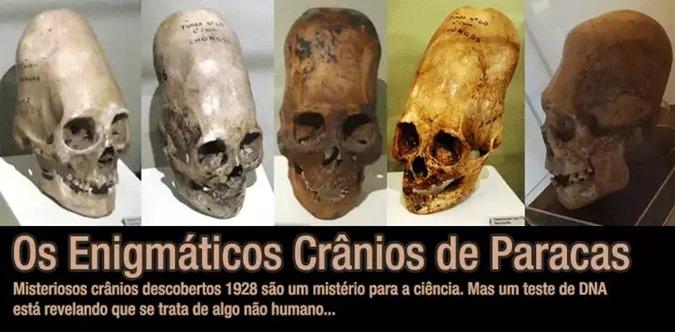 cranios de paracas 01