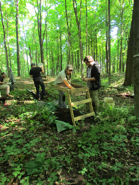 Event 2014: Apple Island Dig Lab - june%2B2014%2B032.JPG