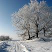 Zima ve Slatině (02).jpg