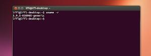 Kernel 3.9.5 su Ubuntu Linux