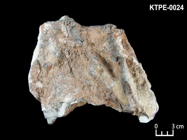 KTPE-0024 菱鎂礦, 石英