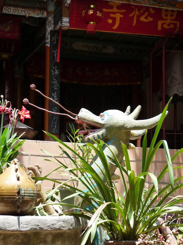 Chine .Yunnan . Lac au sud de Kunming ,Jinghong xishangbanna,+ grand jardin botanique, de Chine +j - Picture1%2B074.jpg