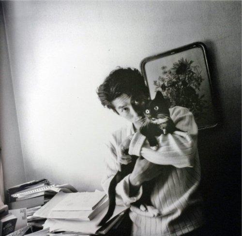 Sanada Hiroyuki and a cat