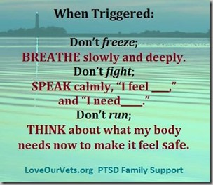 PTSD-when triggered