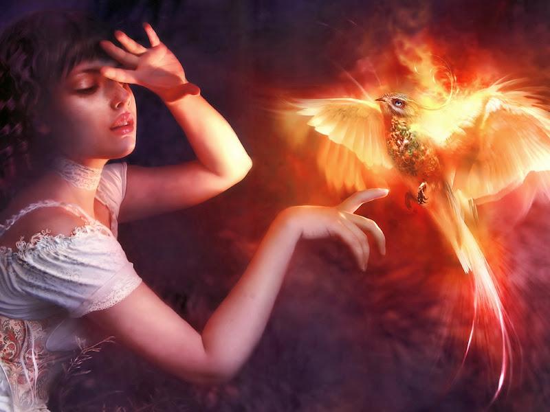 Magic Phoenix And Beauty, Mystery