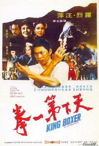 Đệ Nhất Quyền Vương - King Boxer poster