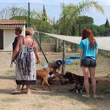 Dog Walk Fun September 6 - Thank You - Quinta Life