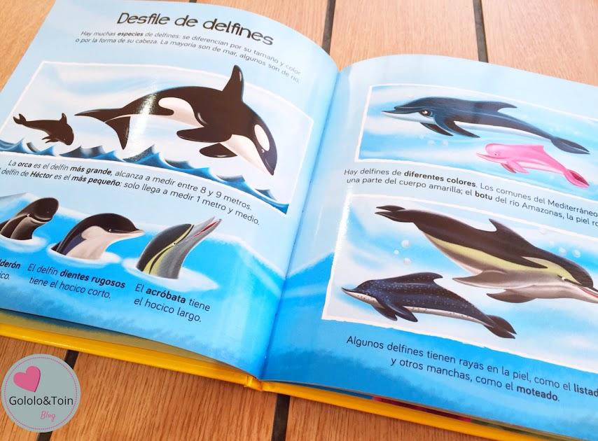 delfin-national-geographic-kids-descubriendo-mundo-niños