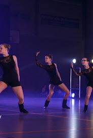 Han Balk Voorster dansdag 2015 avond-4655.jpg