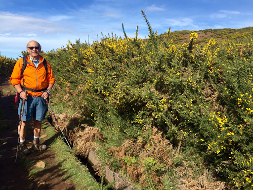 Dad%20amongst%20gorse%20on%20the%20levada%20do%20Paul