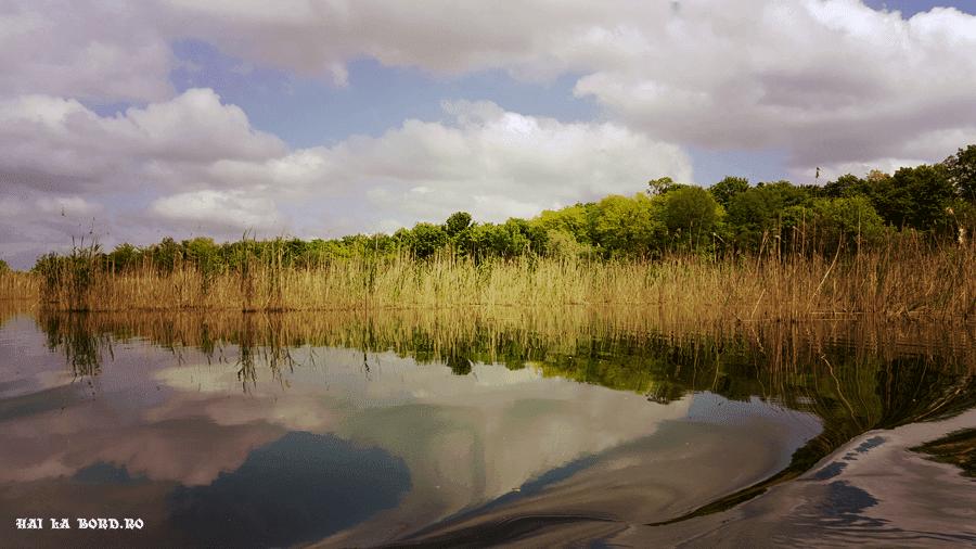 delta neajlovului mai 2016