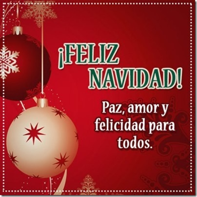 navidad (151)