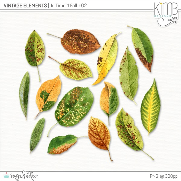 kb-VE_Time4Fall2_6