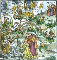 Woodcut Of The Tree Of The Liberal Arts By Master D S 1508, Emblems Related To Alchemy