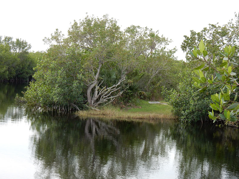 Everglades National Park, Florida, US, Miami,  elisaorigami, travel, blogger, voyages, lifestyle