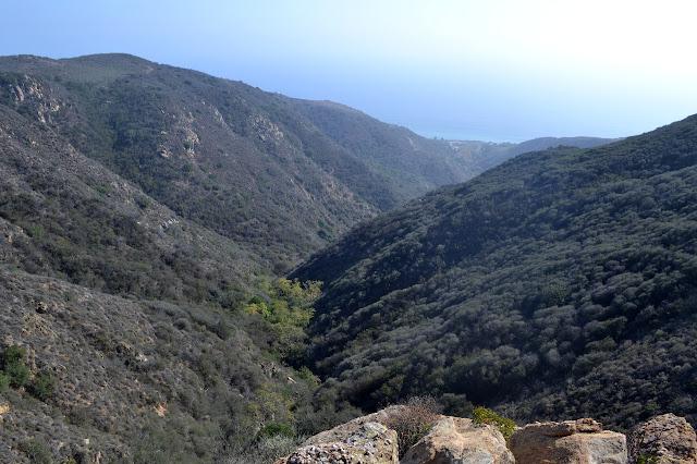 canyon below the dam