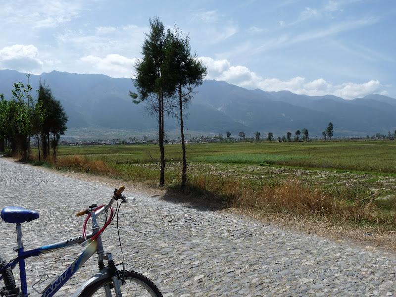 Chine. Yunnan Dali .En vélo vers le lac ERHAI - P1170731.JPG