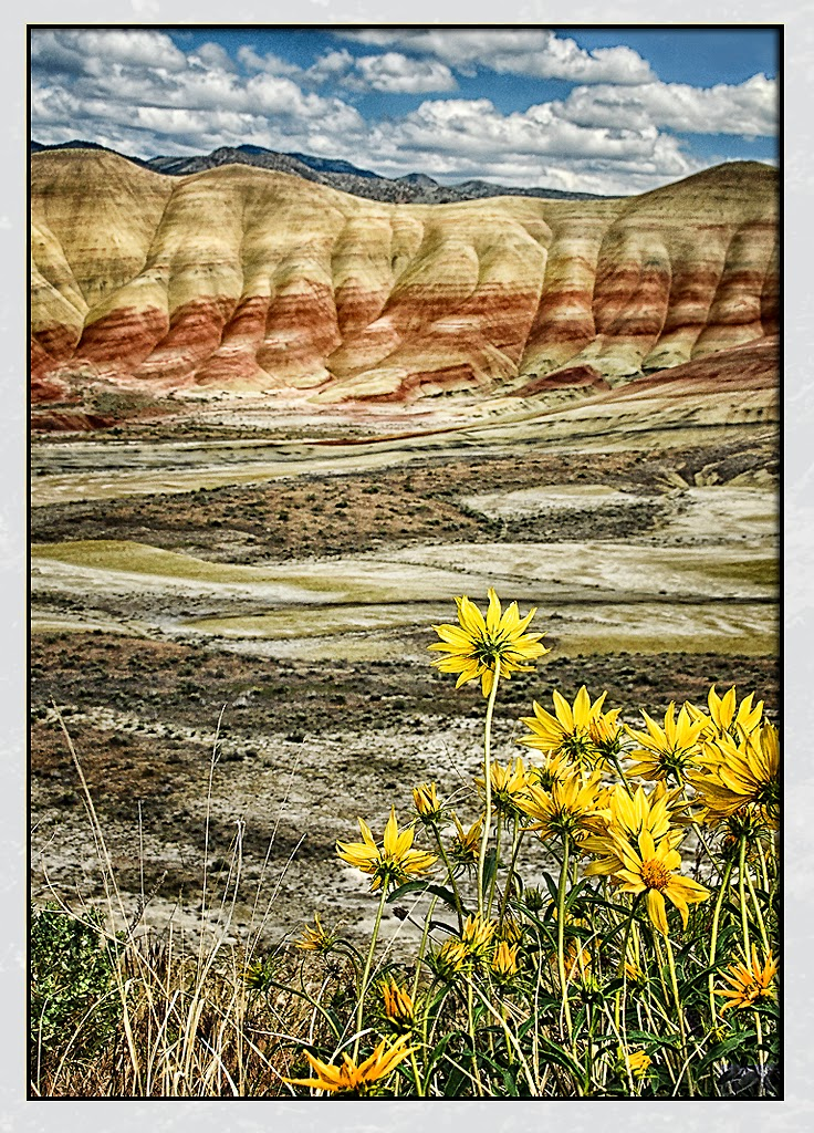 """Painted Hills"" by Ardythe Wendt"
