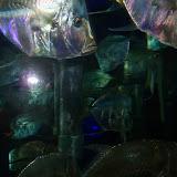 Downtown Aquarium - 116_3836.JPG