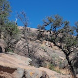 02-23-13 Kerrville & Enchanted Rock - IMGP4994.JPG