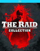 Raid[3]