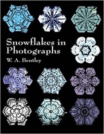 Winter - Snow - Snowflakes in Photographs[10]