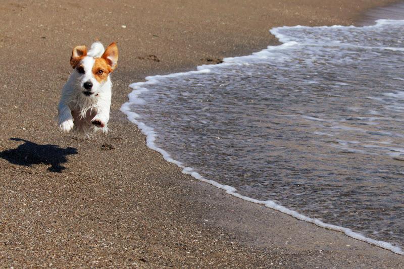 Amy en pleno salto en la playa del Castillo de Fuengirola