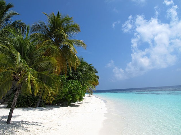 White Sandy Beaches of Maldives
