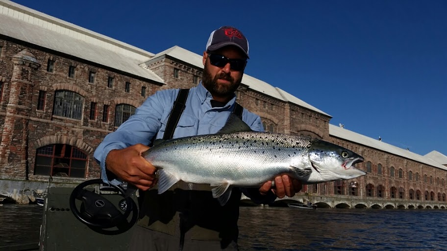 Michigan Atlantic Salmon Fishing Guide Service