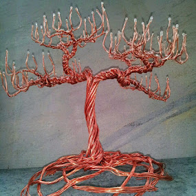 weavedroot by Brian Boyer - Artistic Objects Still Life ( copper tree, recycled wire, copper wire art, wire, copper wire tree, trees, tree art, wire art, wire tree, sculpted wire tree )