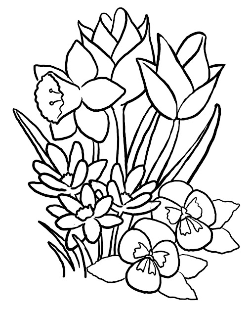 Spring Flowers Coloring Pages