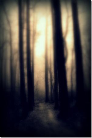 © Allan Cabrera dreaming