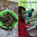 Usai Makan Ikan Lisong, 3 Warga dilarikan ke RSUD Sekarwangi Cibadak, Diduga Keracunan