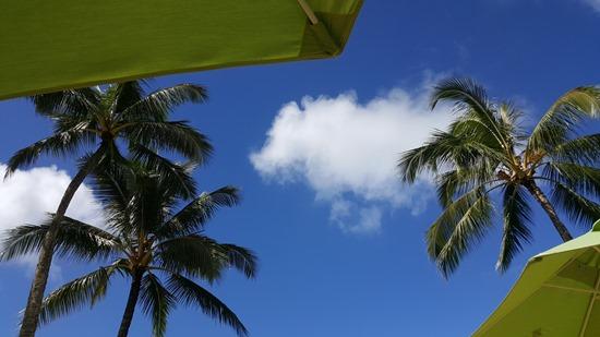 ハワイ島のエアービーアンドビー